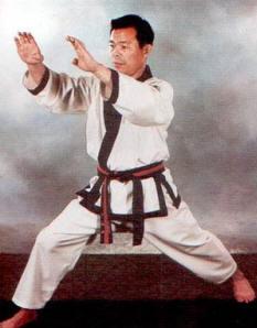 Grandmaster Jae Joon Kim